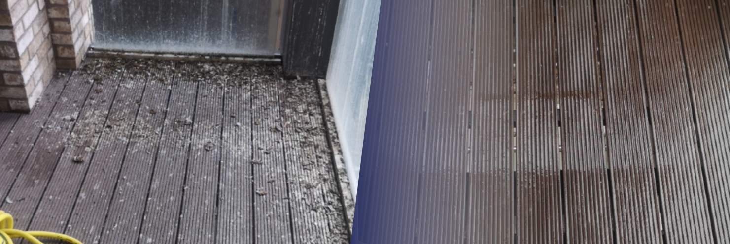 Floor Before and After pigeon fouling Cleaning From Pests - Pied Piper Pest
