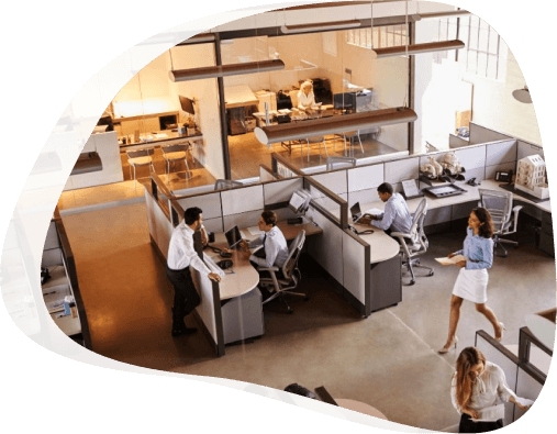 Pest Control for Offices