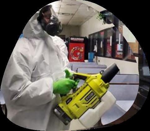 corona virus - The Pied Piper, London's Leading Pest Control Company