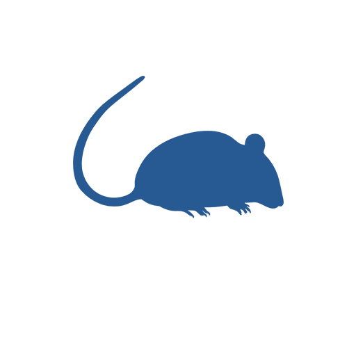 Mice in the workplace